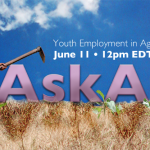 PIM's Director Karen Brooks will participate in Twitter Chat on Youth Employment in Agriculture on June 11