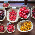 Linking native chilies producers to markets