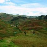 """BioSight"" Workshop: building a framework for modeling sustainable agricultural intensification"