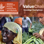 New online resource highlights tools for value chain analysis