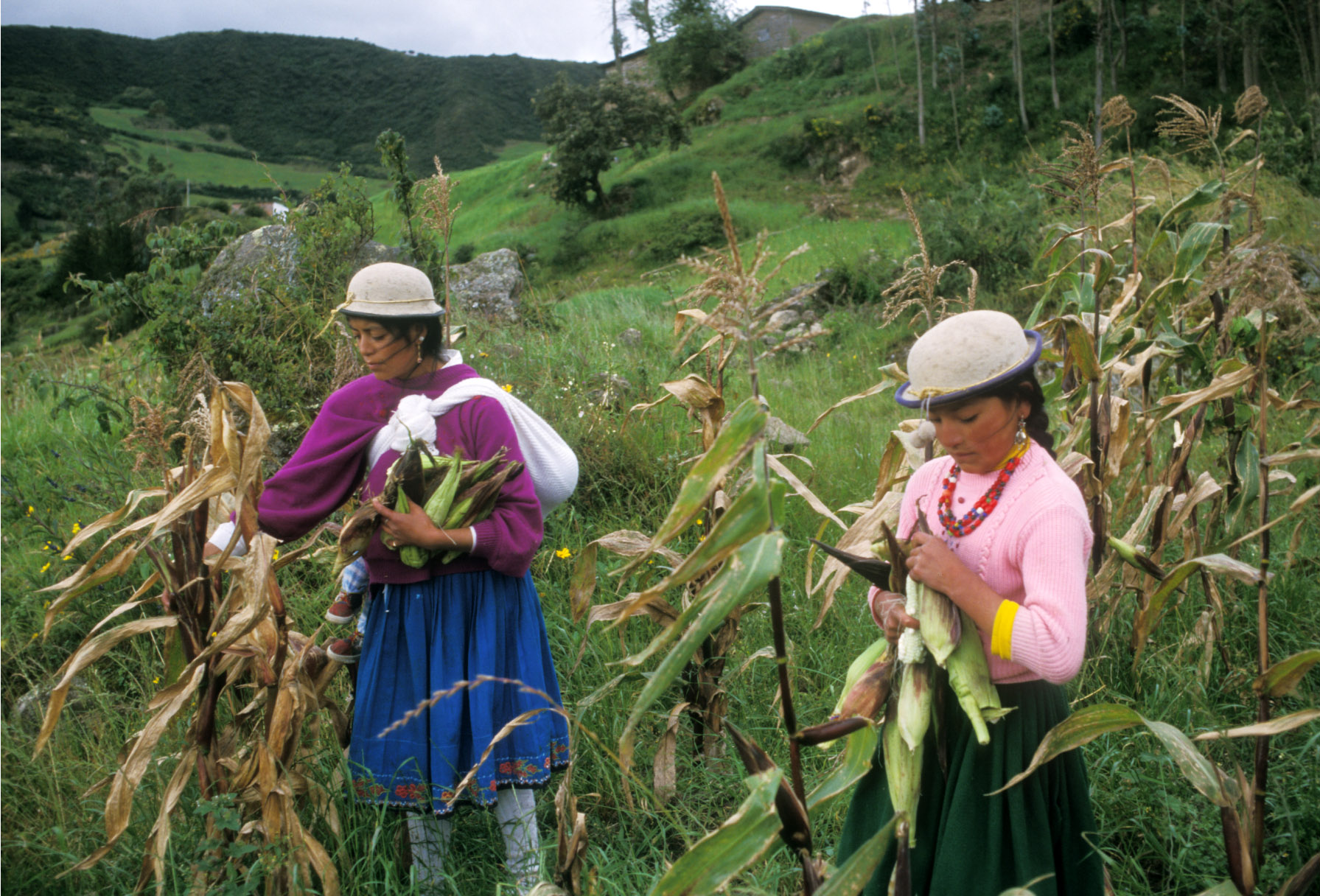 Women's land ownership and decision-making