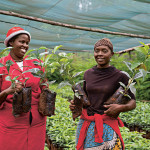 Why rural women are integral in the upcoming climate change negotiations