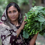 JOB OPPORTUNITY: IFPRI/PIM Associate Research Fellow with gender focus
