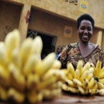 Adaptation actions in Africa: Evidence that gender matters