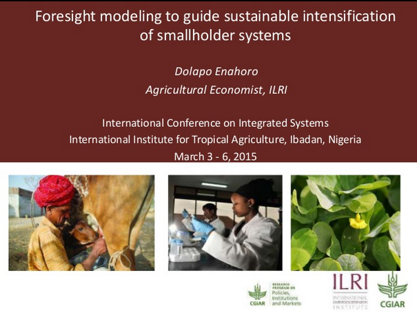 Presentation: Foresight modeling to guide sustainable intensification of smallholder systems