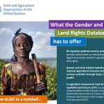 FAO's Gender and Land Rights Database launches a new website