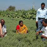 Strengthening capacity of National Agricultural Research Institutes