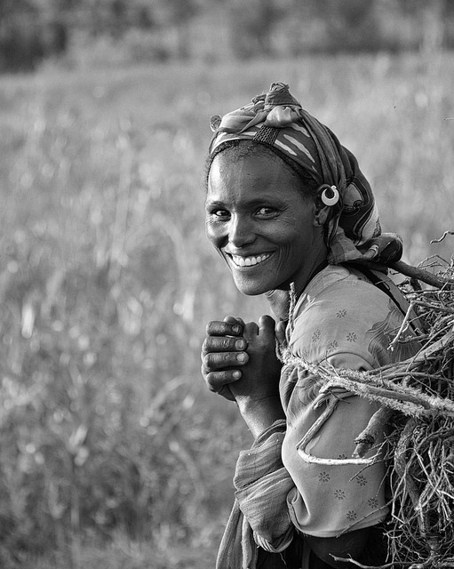 Patterns of agricultural production among male and female holders in Ethiopia