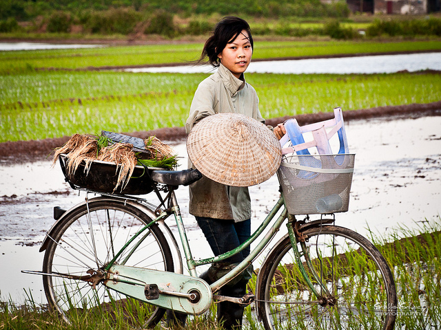 Gender, headship, and the life cycle: Landownership in four Asian countries