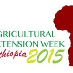 Extension's role in scaling up agricultural innovation in Africa: discussing synergies and making plans