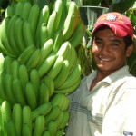 Testing a new approach to drive inclusive business in Peru