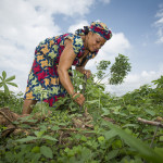 Strengthening women's land rights: what does data have to do with it?