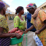 Reinforcing the gender lens in research on value chains and technology adoption