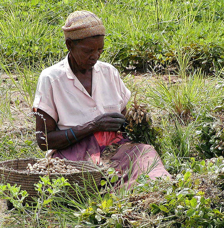 What do we mean by 'women's crops'?