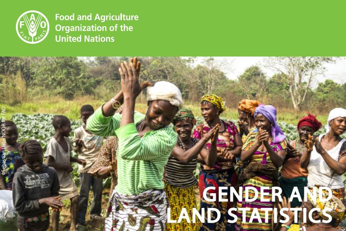 Gender and Land Statistics: new FAO info-note based on a collaborative work with PIM