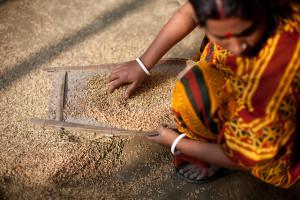 Bangladesh - IPV blog