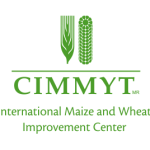 Vacancy: Lead Adoption/Impact Economist, CIMMYT