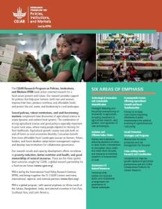 PIM brochure 2016