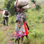 Working paper: Indicators of gendered control over agricultural resources