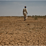 Book: Confronting Drought in Africa's Drylands: Opportunities for Enhancing Resilience