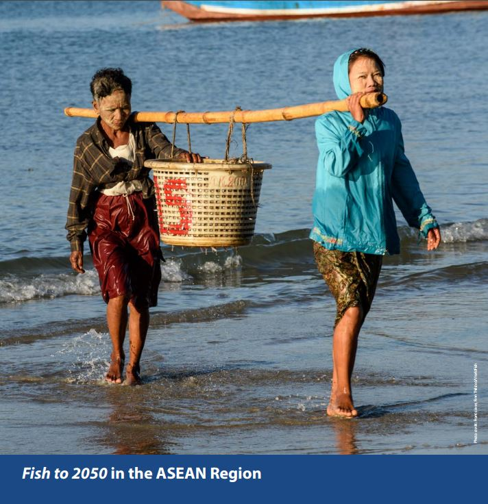 Fish to 2050 in the ASEAN region