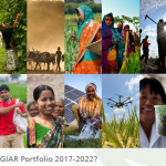 PIM in the CGIAR Research Portfolio 2017-2022
