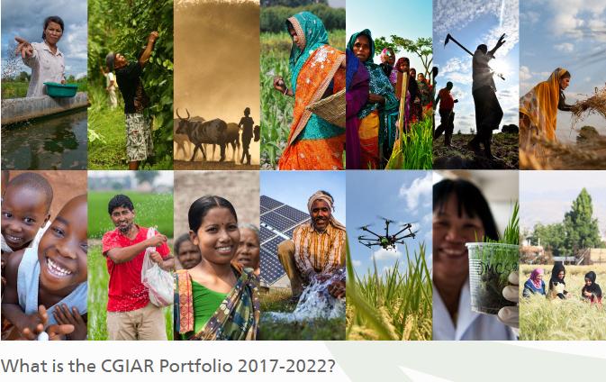 PIM in the CGIAR Research Portfolio 2017-2022