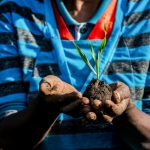 Webinar: What levels and composition of investment best serve global objectives of poverty reduction, improved nutrition, and sustainable resource management?