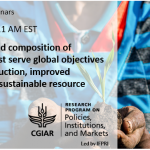 Webinar: What levels and composition of investment best serve global objectives of sustainable development?
