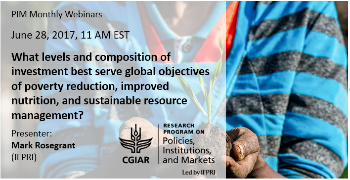 Webinar recording: What levels and composition of investment best serve global objectives of sustainable development?
