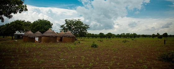 New study fills a knowledge gap on drivers of perceived land tenure security: Evidence from Ghana
