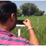 Picture-based crop insurance: Is it feasible? Is it sustainable?