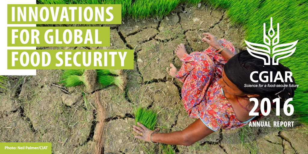 2016 CGIAR Annual Report: Innovations for Global Food Security