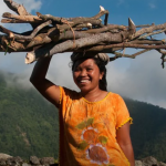 How CGIAR improves the livelihoods of rural women