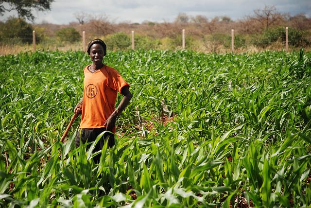 Young farmer Ethiopia