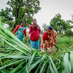 Community land rights open investment opportunities in global south