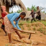 Youth migration and labor constraints in African agrarian households