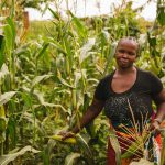 Journal article: Women's empowerment in agriculture and agricultural productivity