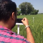 Webinar: Helping smallholder farmers manage risks: Innovations to improve agricultural insurance