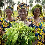 Call for proposals: 'Feminization' of agriculture: Building evidence to debunk myths on current challenges and opportunities