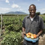 WEBINAR: Do medium and large-scale farms generate income spillovers for rural households? The case of Tanzania