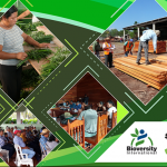 WEBINAR: Community forest concessions in Petén, Guatemala: Effective governance for tropical forest conservation and socio-economic development