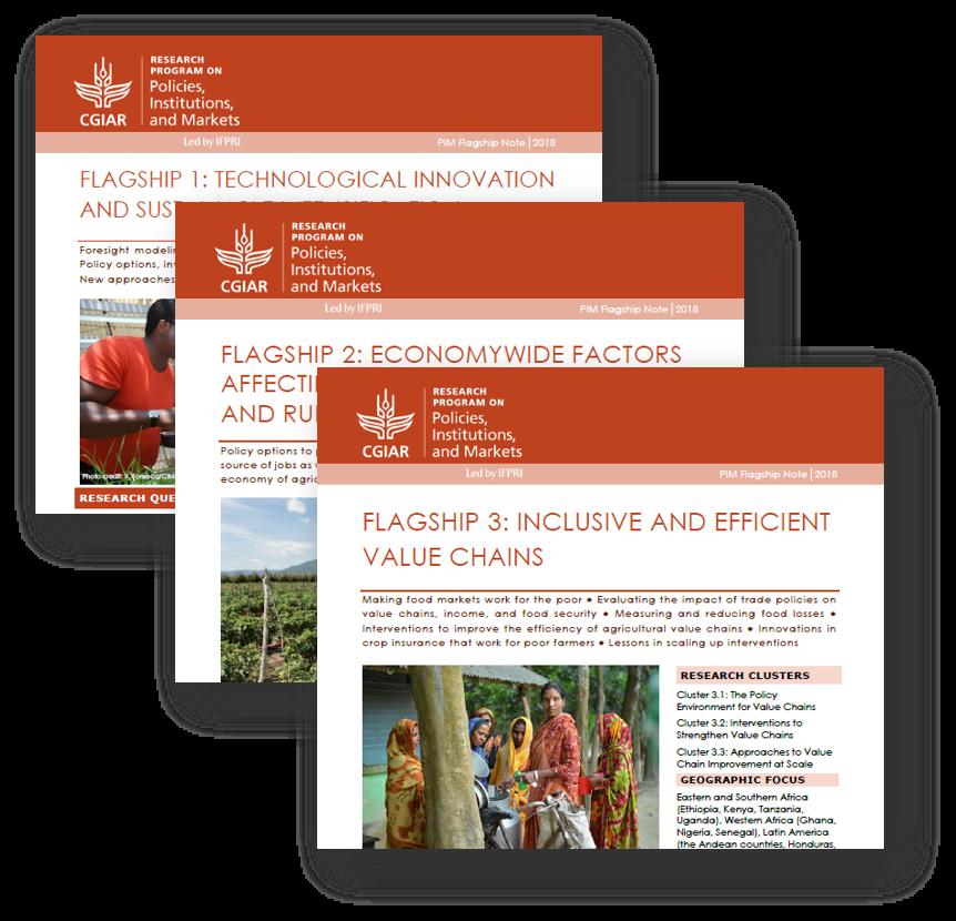 PIM Flagship Notes 2018: Overview and recent achievements