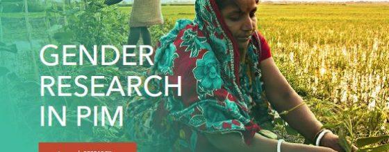Brochure: Gender research in PIM