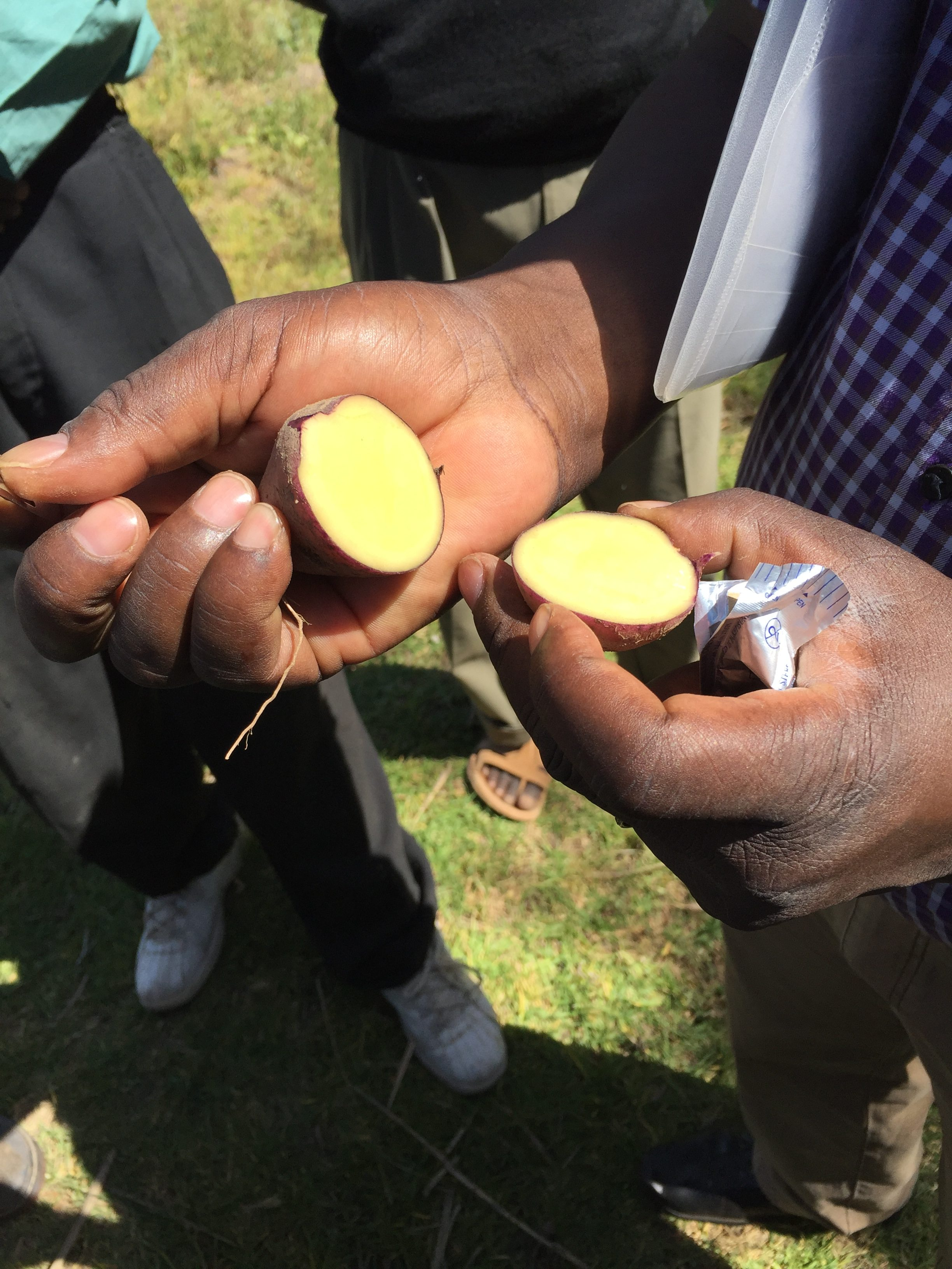 Who sits at the table? Policy, people, and potatoes in Kenya