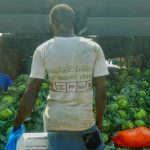 WEBINAR: Power, politics, and governance in the food system: Applications to Africa