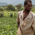 Land tenure and perceived tenure security in the era of social and economic transformation in Africa