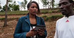 Engaging youth in agricultural extension and advisory services