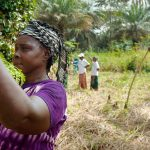 Policy seminar: Crafting the next generation of CGIAR gender research