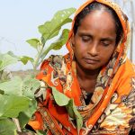 Gender, agricultural growth, and rural transformation research in CGIAR